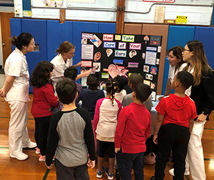 Meadow Elementary School Hosts 4th Annual Molloy College Health Fair