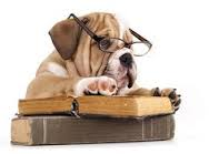 Bulldog reader